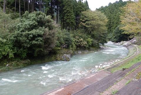Kawa28921shushokuchu