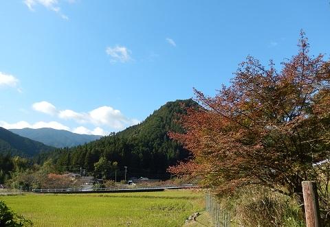 Koyo28114siroyama