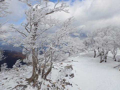 Yuzuriha29311hinooku3
