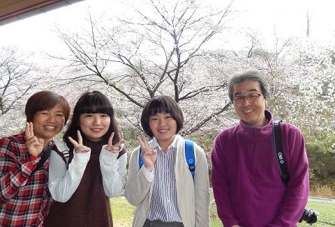 Hayano2949sakura2_2