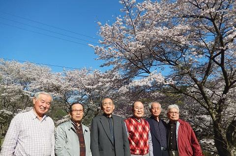 Kitamura29413sakura