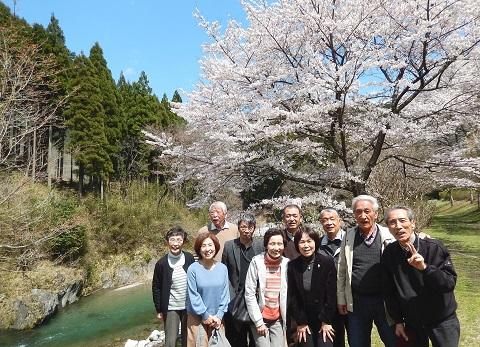 Igonokai29413sakura1