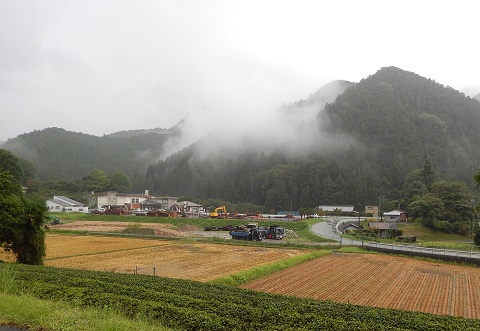 Asagiritanbo29912