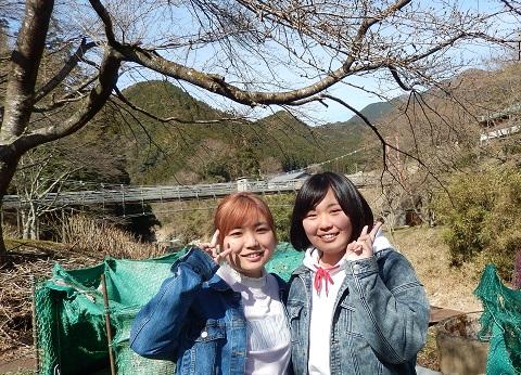 Hayano30318hasisiroyama