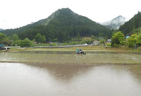 Taue3057siroyama