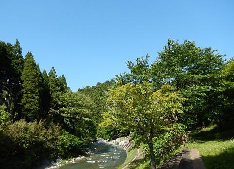 Kawabe30514sawayaka