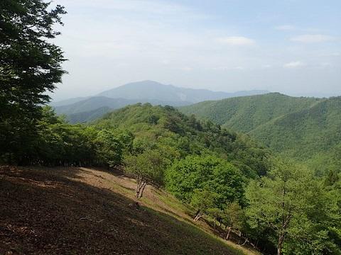 Yuzuriha30517akazore6