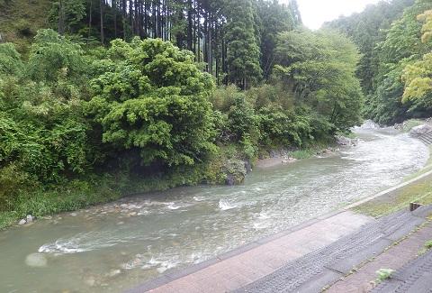 Zousui30611yugata