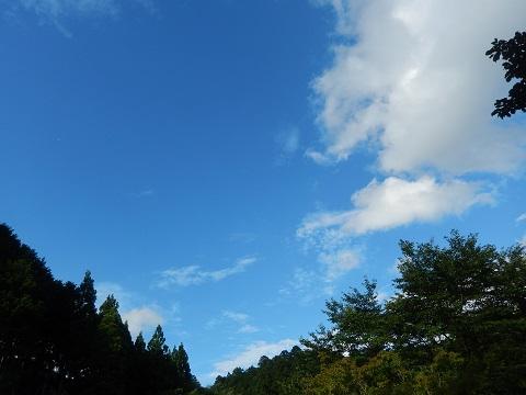 Aozora3078hisasiburi