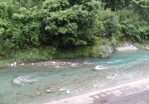 Maenokawa3079shushokuchu
