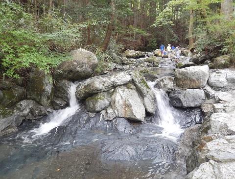 Chihara30831tani2