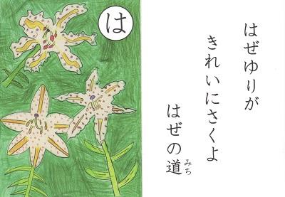 Iitakaruta2019122ha
