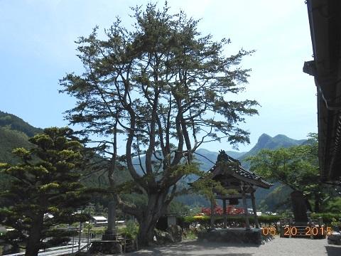 Kaakira2015520touzenji1