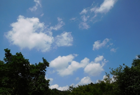 Aozorasirokumo2019723