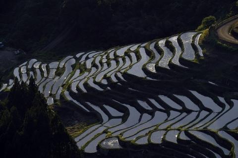 Horii2019522maruyama2