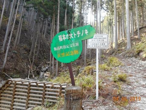 Kaakira201946ootochinoki1