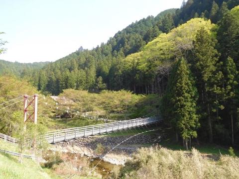 Ookeyaki2019422wakabahasi1