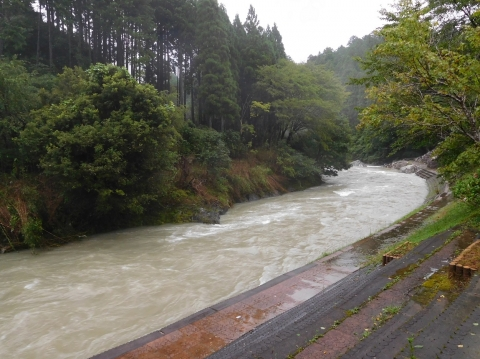 Taifuzousui2019816socho