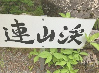 Tanaka2019526renzankei
