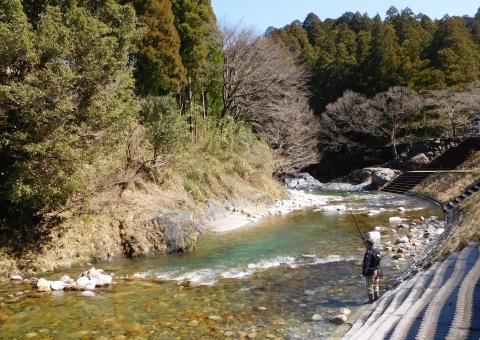 Amagoturi202039