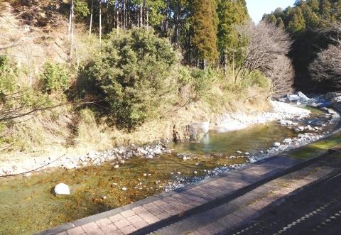 Kawa2020119hikaeru