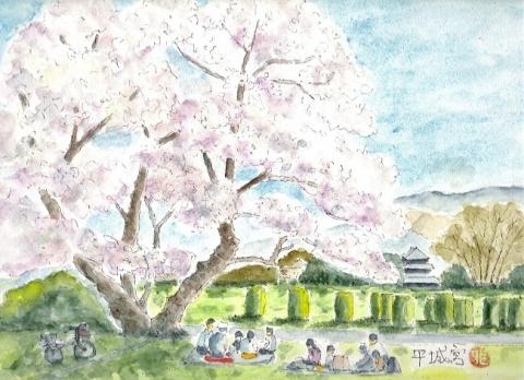 Masaheijoukyousakura