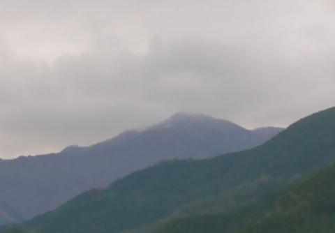 Mayoidake20191228muhyou