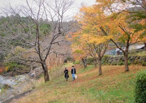 Nagano21123koyosanpo