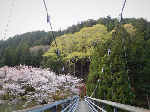 Ookeyaki202141wakaba