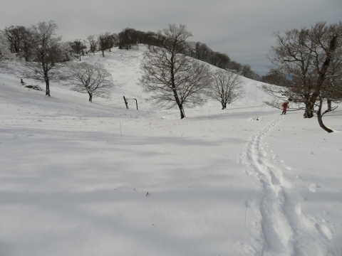 Pic2020119myojinr13