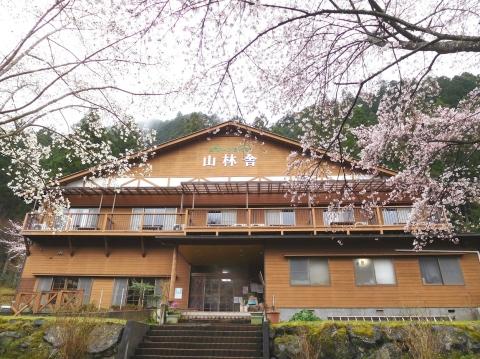 Sakura2020331onkan