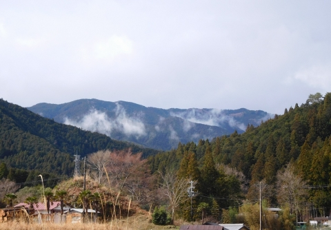 Umeo202132asagiri