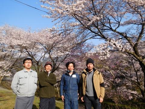 Yoneyama2021320sakura