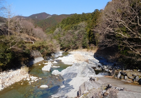 Youkou202024yamakawa